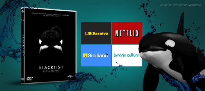 """Documentário """"Blackfish"""" já está disponível no Brasil online e em DVD; saiba como assistir"""