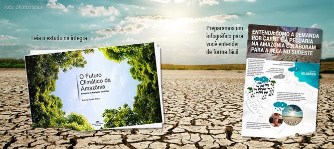 Estudo aponta ligação entre o desmatamento da Amazônia e a seca em São Paulo