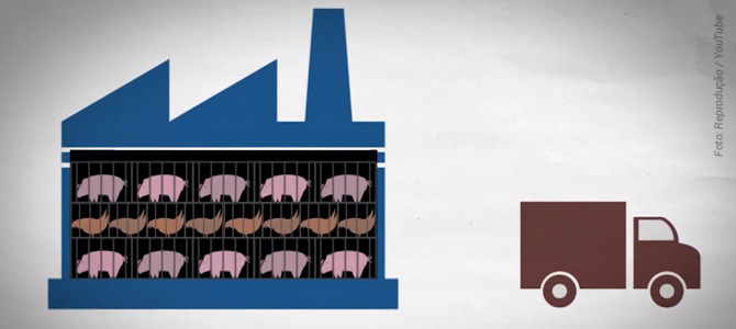 Animação de 2 minutos explica sem chocar como funciona a pecuária e como acabar com ela
